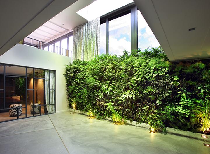Verticale-plantenwand-Amsterdam
