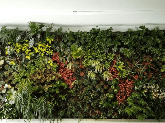 Groene muur interieur