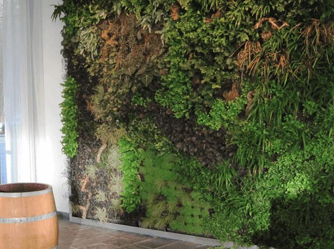Groene muur Wageningen