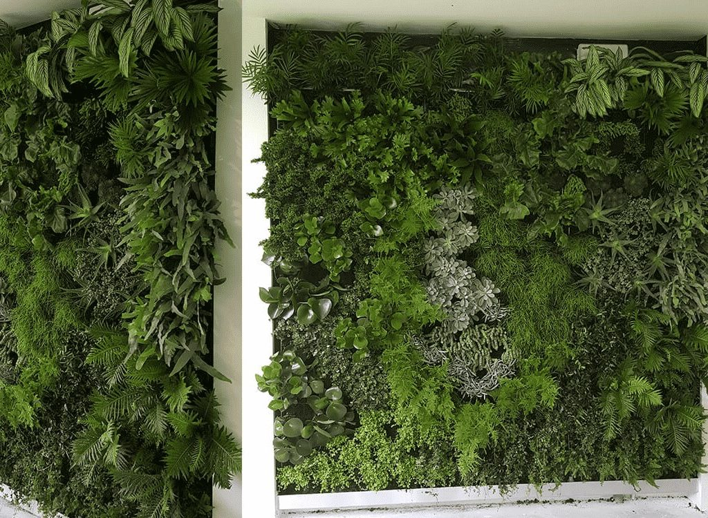 Groene wanden Reeuwijk