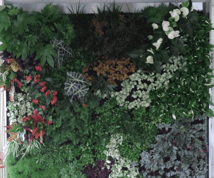 Levende tuin Brussel