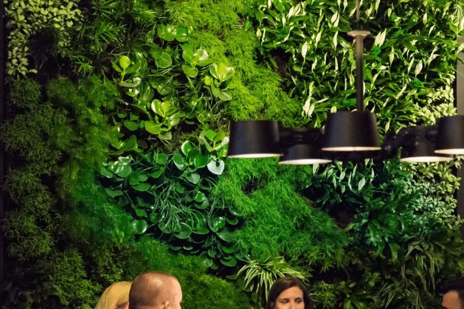 Verticaal groen Eindhoven
