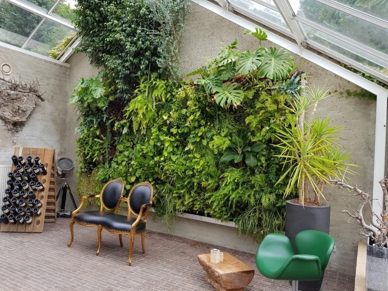 Verticale tuin Groot Warnsborn