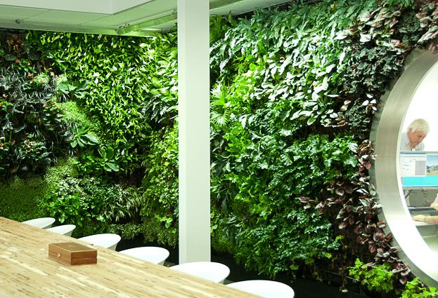 Green wall Wageningen