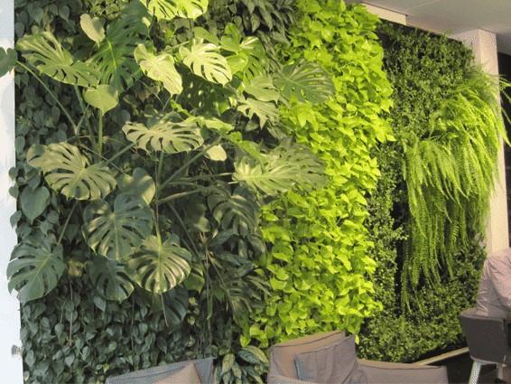 Groene muur binnen