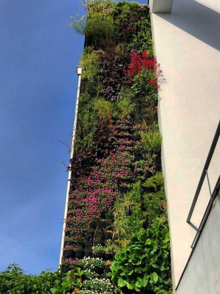 exclusieve verticale tuin